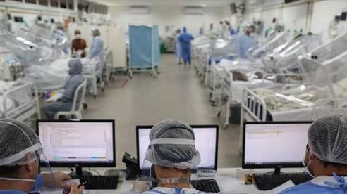 Thế giới 6 triệu người nhiễm Covid-19, Nhật lo làn sóng tự tử