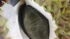Vừa mở quả sầu riêng cô cái giật bắn người vì ngỡ một con chuột béo nằm bên trong, nhưng hoá ra lại là múi sầu riêng màu đen lần đầu thấy trong đời