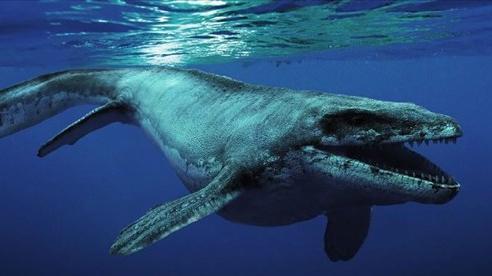 Những thủy quái đại dương dữ dằn nhất lịch sử tiến hóa, siêu cá mập gặp cũng 'tắt điện'
