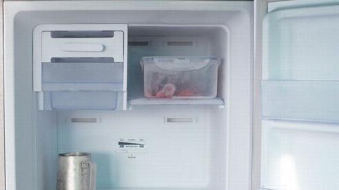 Cháu gái giấu xác bà ngoại trong tủ đông suốt 16 năm