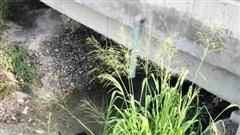 Nam thanh niên tử vong cạnh xe máy rơi dưới suối ở Đồng Nai