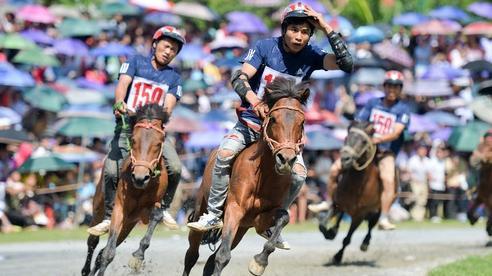 Độc đáo giải đua ngựa thồ và những kị sĩ 'chân đất' ở Bắc Hà