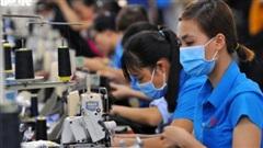 Xóa tan nỗi lo thất nghiệp của lao động trẻ ảnh hưởng bởi dịch bệnh Covid-19