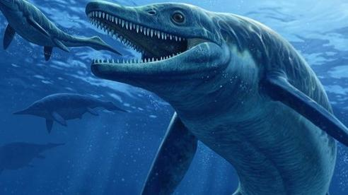 'Quái vật trong quái vật' ngư long 246 triệu tuổi hiện hình trên núi đá