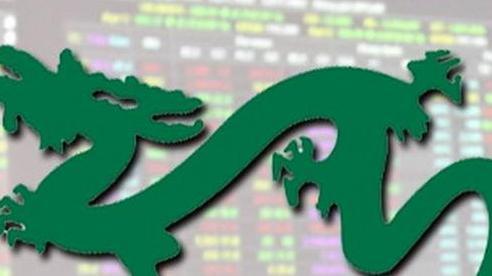 Tỷ trọng tiền mặt của VEIL Dragon Capital xuống mức thấp nhất kể từ khi 'bệnh nhân Covid số 17' xuất hiện