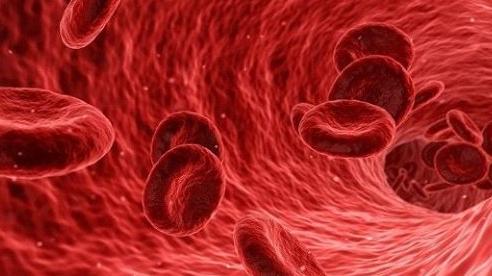Phát hiện mới SARS-CoV-2 tấn công mạch máu gây tử vong