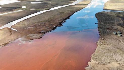 Tổng thống Putin tuyên bố tình trạng khẩn cấp quốc gia do tràn dầu ở vùng Siberi