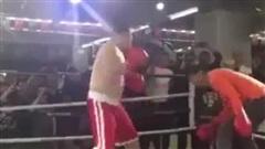 Võ truyền thống Trung Quốc thêm một lần thua thảm trước MMA