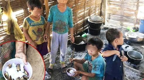 Đằng sau hình ảnh những đứa trẻ ăn cơm nguội với ve sầu:  Hoàn cảnh vô cùng khó khăn, từ bé tới giờ không biết cái kẹo tròn méo ra sao