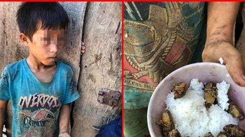 Bát cơm đầy ve sầu của cậu học trò nghèo vùng cao khiến dân mạng bùi ngùi, thương cảm