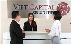 Chứng khoán Bản Việt đặt kế hoạch lợi nhuận giảm 36% trong năm 2020