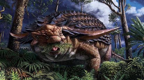 Phát hiện 'bữa ăn' được bảo quản nguyên vẹn trong dạ dày khủng long bọc giáp sống cách đây 110 triệu năm