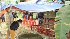 Hai bố con ở Thanh Hóa chết dưới giếng sau tiếng hét thất thanh