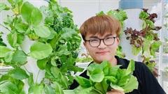 Ngắm vườn rau và nấm sạch do chính tay MC Đại Nghĩa tự trồng trên sân thượng nhà mình ở quận 7, TP HCM