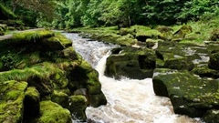 Bí ẩn dòng suối ác quỷ 100% người rơi vào là chết ở Anh