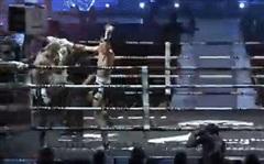 Võ sĩ Thái Lan 'gây bão' khi đánh cùi chỏ vào sống lưng để 'kết liễu' đối thủ