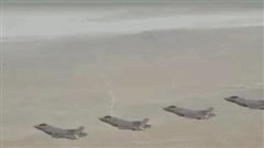 Mỹ thông báo đã có sát thủ diệt tên lửa S-300 và S-400 Nga: 'Tin sét đánh'?
