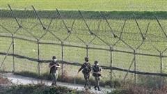 Triều Tiên dọa quân đội đã 'sẵn sàng', Hàn Quốc chuẩn bị 'mọi tình huống', phối hợp chặt với Mỹ