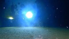 Bí ẩn dưới rãnh sâu nhất Trái Đất: Nuốt chửng những 'cây cầu' dài hàng chục ki-lô-mét