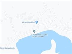 Phú Yên: Phát hiện thi thể một bé gái tại khu vực rừng Dương