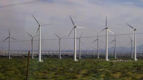 Mexico: Chỉ vì phản đối dự án điện gió, 15 người bị phục kích giết dã man