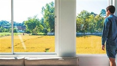 Ngôi nhà được thiết kế theo phong cách tối giản với những bức tường kính nhìn ra cánh đồng lúa tuyệt đẹp