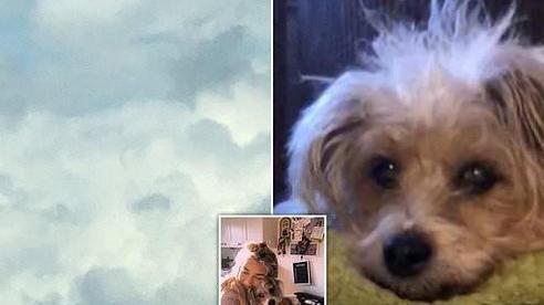 Cô gái bật khóc nức nở khi nhìn thấy hình ảnh chú chó cưng đã qua đời xuất hiện giữa trời mây
