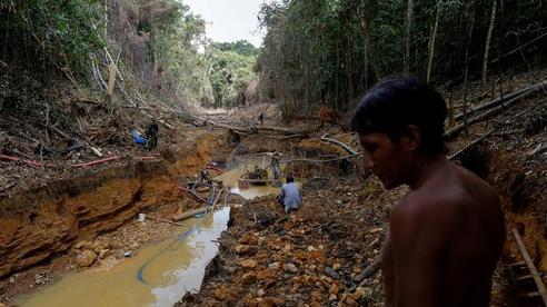 Bộ lạc Amazon lâm nguy trước nạn khai thác vàng