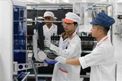 Công nghệ thông tin Việt Nam cần làm gì?