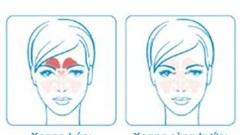 Học cách bảo vệ mũi cho bé cưng và cả nhà