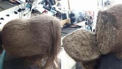 Mang mái tóc bết nhiều năm không cắt đến tiệm đòi phục hồi, cô gái gây choáng với 'tổ quạ' trên đầu, hình ảnh sau tân trang khiến ai cũng ngỡ ngàng