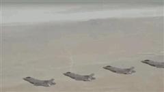 Ngạc nhiên: Việt Nam có tới 6 khí tài săn diệt chiến đấu cơ tàng hình - 3 loại đẳng cấp TG