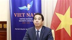 Thứ trưởng Ngoại giao Tô Anh Dũng tham dự Cuộc thảo luận mở trực tuyến của Hội đồng Bảo an LHQ
