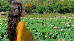 Đến Hang Múa, Ninh Bình ngập trong sắc sen hồng chiêm ngưỡng vẻ đẹp thiên nhiên xanh mướt