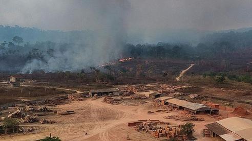 Bất ngờ các vụ cháy tại Amazon đạt mức kỉ lục