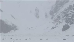 Tân Cương bất ngờ xuất hiện lớp tuyết dày 30cm giữa mùa hè