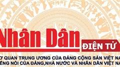 Xây dựng và phát triển bóng đá Việt Nam thật sự chuyên nghiệp