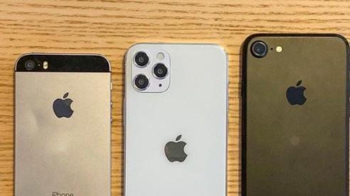 iPhone 12 5.4 inch lần đầu lộ diện, 'khoe dáng' cực ngầu bên iPhone SE và iPhone 7