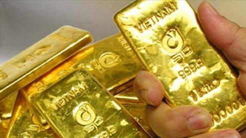 Vàng trong nước vừa lập kỷ lục: Vượt 50 triệu đồng/lượng, cao nhất từ trước đến nay