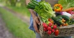 Video: Đừng nấu, những loại rau này ăn sống còn bổ hơn nhân sâm