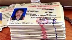 Tranh cãi quanh việc giấy phép lái xe có nên tuân thủ Công ước Viên