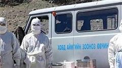 Trung Quốc ban bố cảnh báo cấp 3 về dịch hạch