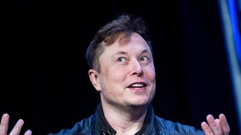 Tỷ phú ô tô điện Tesla bất ngờ bán quần đùi đỏ