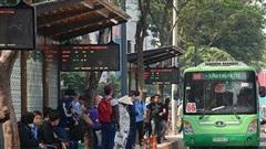 TP.HCM: Không có chuyện xe buýt tạm ngưng từ ngày 15/8