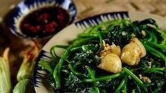 Đây là loại rau giàu vitamin gấp 10 lần củ khoai lang, có tác dụng phòng bệnh ung thư và cực tốt cho ngày 'đèn đỏ'
