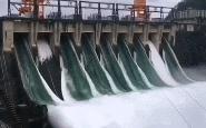 'Cá bay đầy trời' khi đập thuỷ điện Trung Quốc lần đầu mở đập tràn xả lũ sau 9 năm