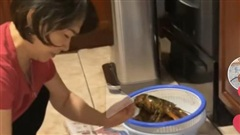 Bước vào bếp dõng dạc hỏi mẹ 'hôm nay ăn gì', chàng trai có ngay đoạn clip triệu views trên TikTok khiến dân mạng bật cười thành tiếng
