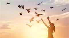 Đừng mải mê chạy theo những thứ cao xa, học ngay những điều đơn giản này để cuộc sống luôn hạnh phúc