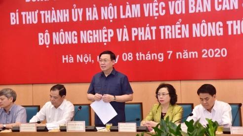 Hà Nội mong muốn tháo gỡ vấn đề quy hoạch hai bên bờ sông Hồng