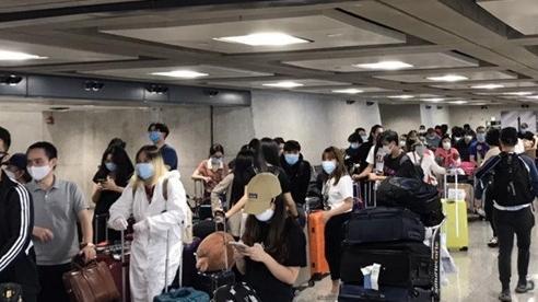 Tiếp tục đưa 346 công dân Việt Nam từ Hoa Kỳ về nước
